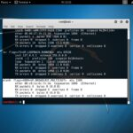 How to Connect ALFA AWUS036H to Kali Linux in VirtualBox - wlan0 detection