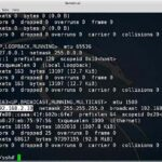 How to Setup SSH Server on Kali Linux – ifconfig command